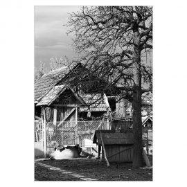 Bildergalerie Dörfliche Lebensräume in Ostungarn