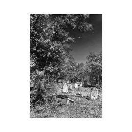Jüdischer Friedhof bei Tokaj an der Bodrog